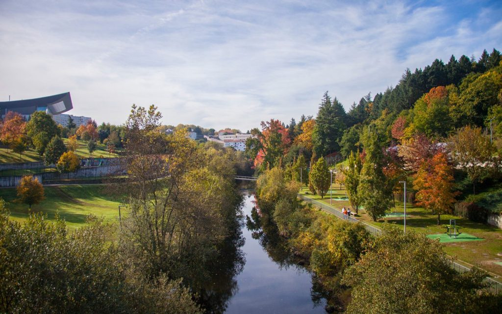 Corgo Park